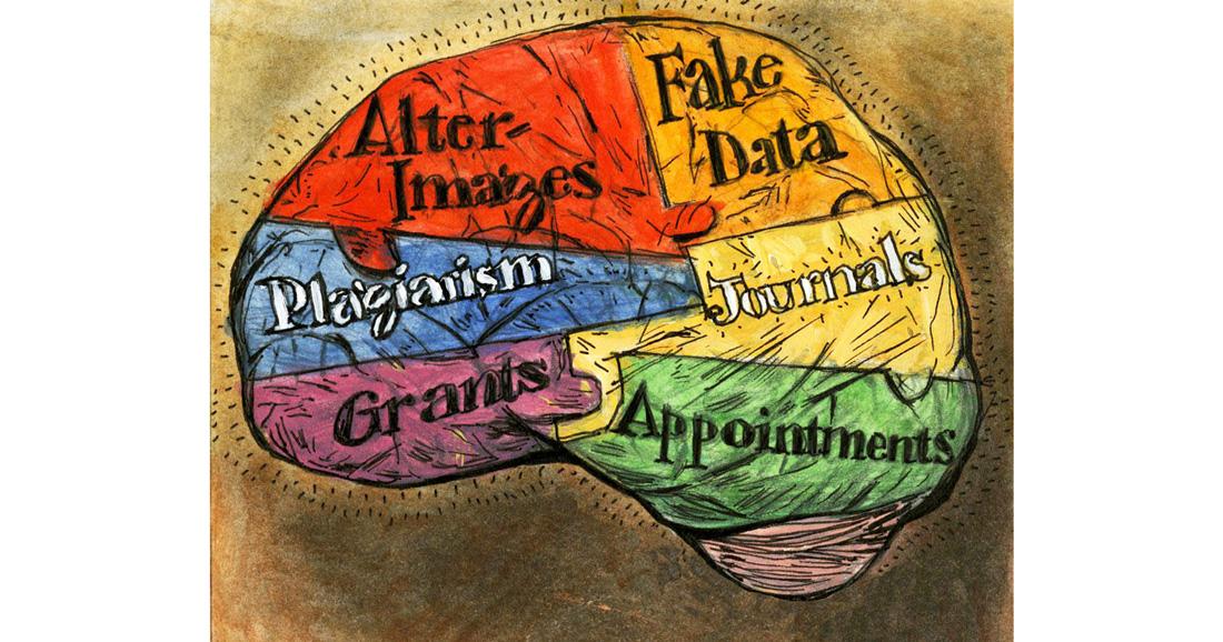 cartoon brain with fake fraud centers