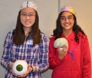 Teen volunteers at the library's Brain Awareness Day. Photo courtesy of Ashburn Library