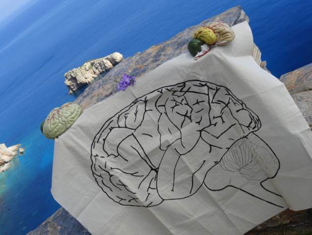 "The Brain visits Amorgos, the ""island of endless blue."" The event was organized by Professor Marigoula Margariti on March 21, 2014."