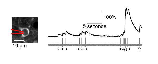 voltage graph