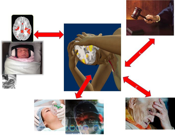 photo collage of causes of pain