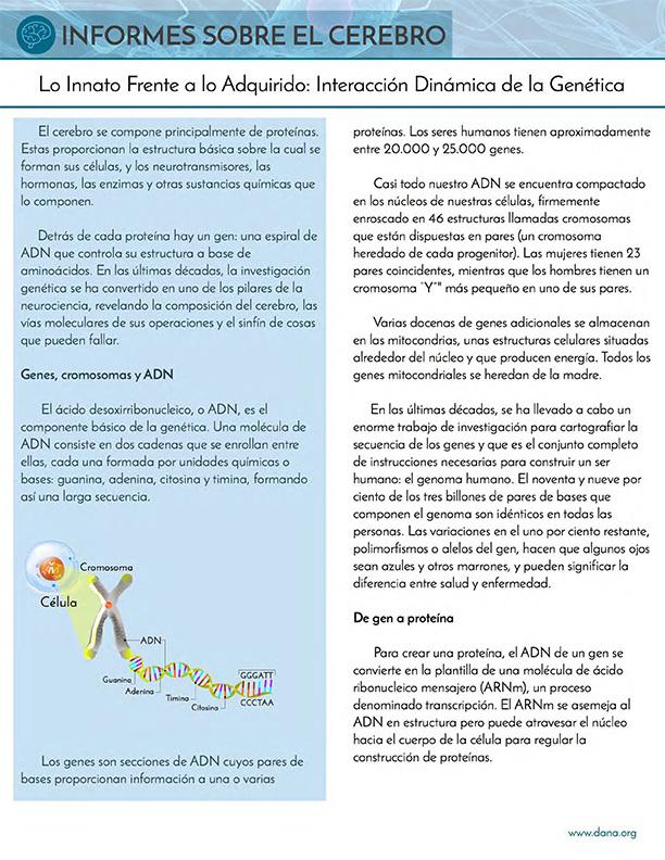 Nature and Nurture: Genetics (Spanish)