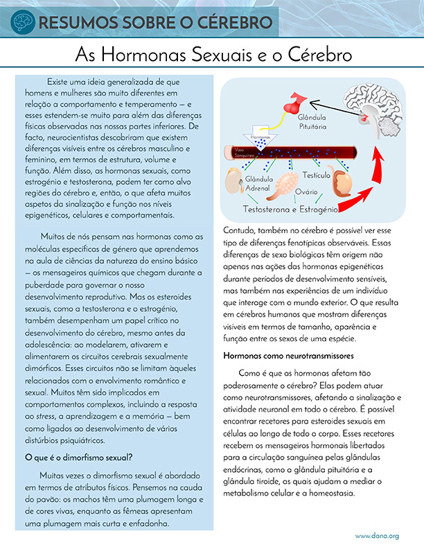 Sex Hormones and the Brain (Portuguese)