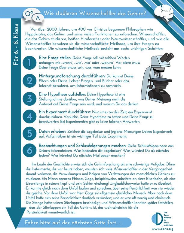 How do Scientists Study the Brain? Grades 6-8 (German)