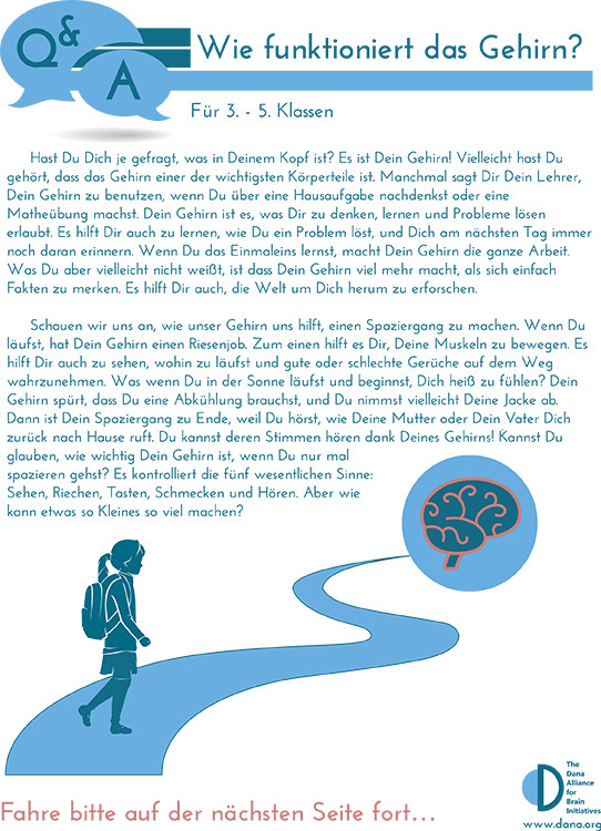 How Does the Brain Work? Grades 3-5 (German)