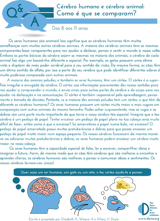 Human & Animal Brains: How do they Compare? Grades 3-5 (Portuguese)