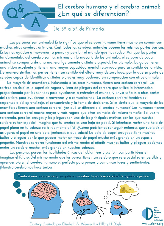 Human & Animal Brains: How do they Compare? Grades 3-5 (Spanish)