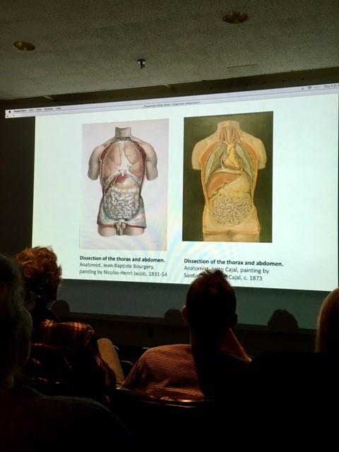 Cajal_Anatomy