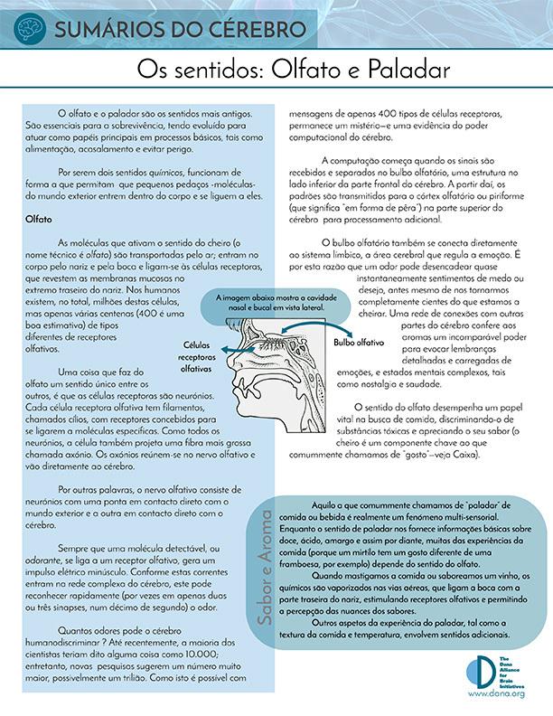 Senses: Smell and Taste (Portuguese)