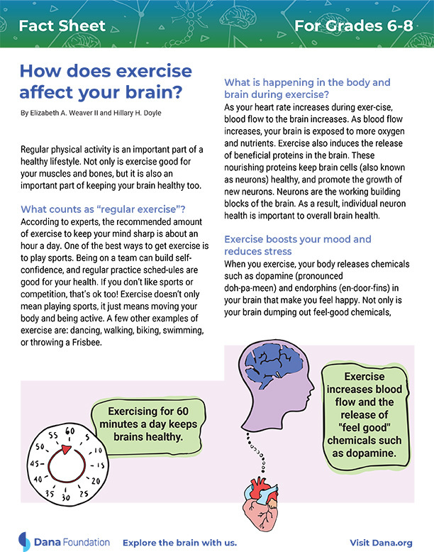 How Does Exercise Affect Your Brain? Grades 6-8