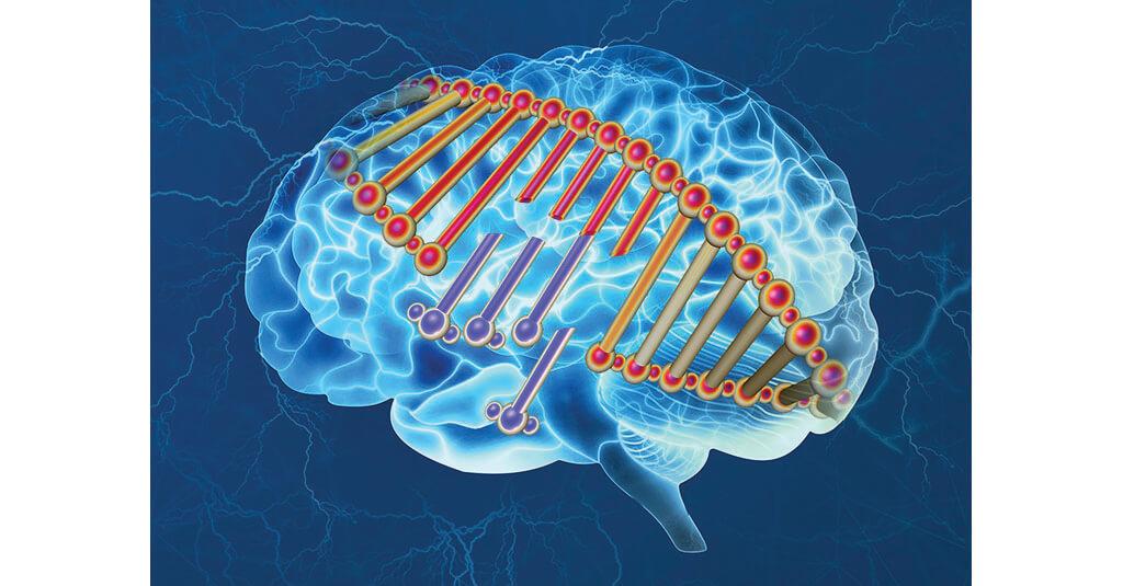 Gene conundrum Alzheimer's
